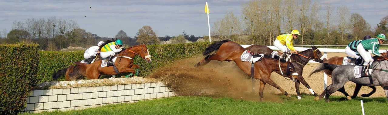 2009 Grand National