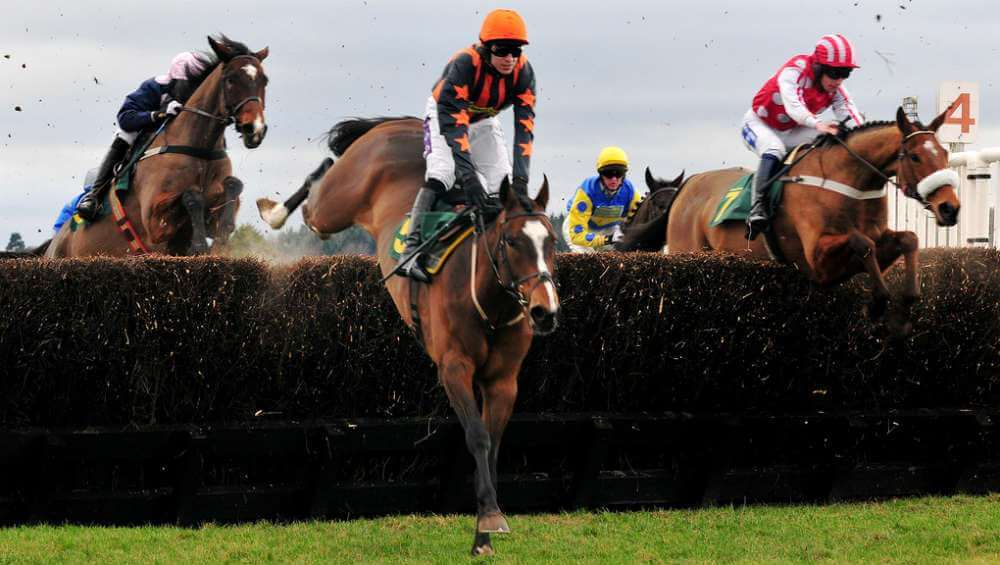 Grand National Fences Course Grandnational Org Uk