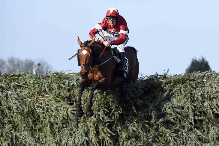 Tiger Roll Grand National 2018