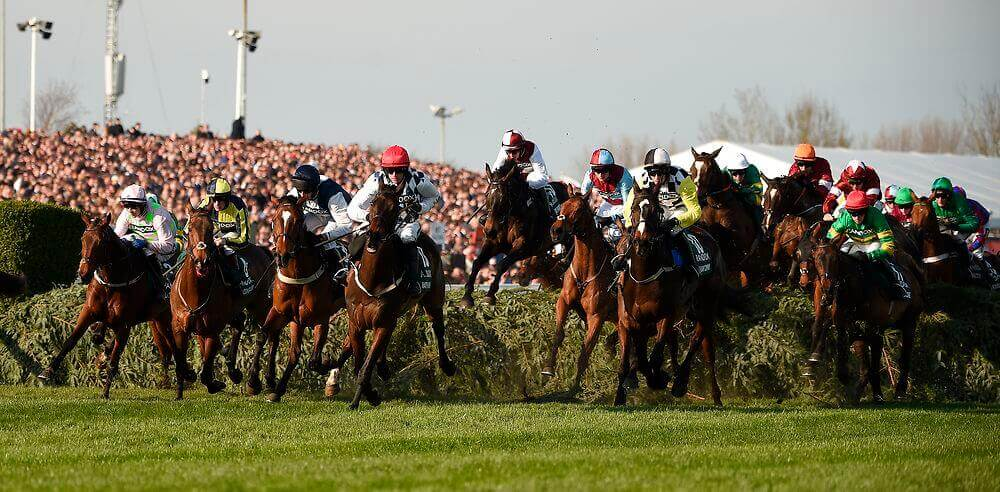 Virtual Grand National Results