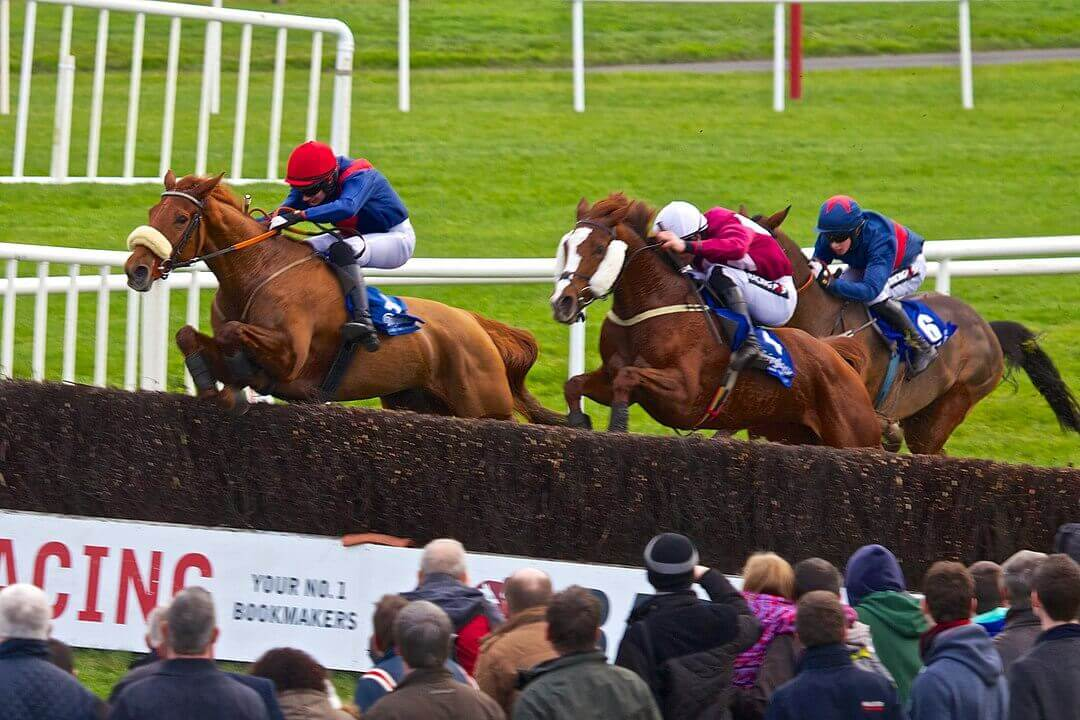 Horse Racing at Fairyhouse